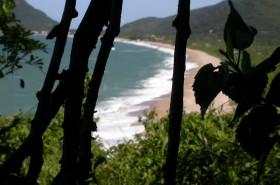 Wallpaper Praia da Armação